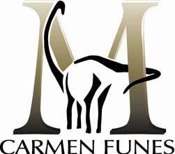 Museo Municipal Carmen Funes