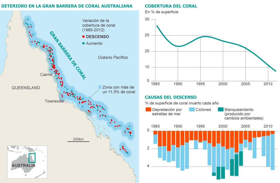 Cobertura del coral