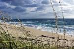 Ecosistema costero mediterráneo