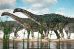 Manada de titanosaurios