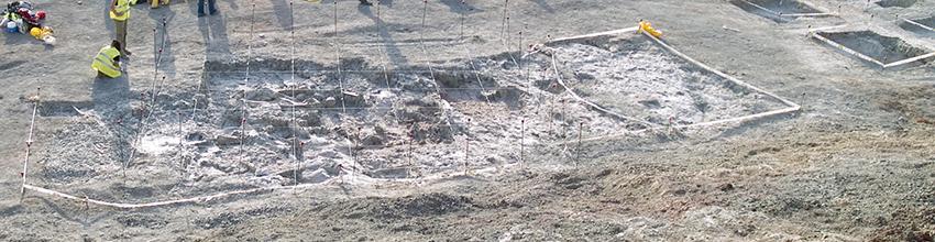 """Aspecto del ejemplar de """"Lohuecotitan pandafilandi"""" durante la excavación en Lo Hueco en 2007"""