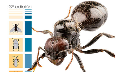 Experto Universitario en Entomología Aplicada (3ª ed.)